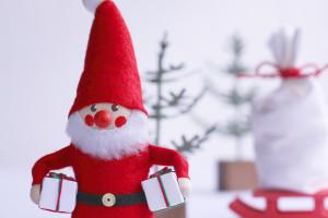 クリスマスの夜はサンタクロースを探してみよう!